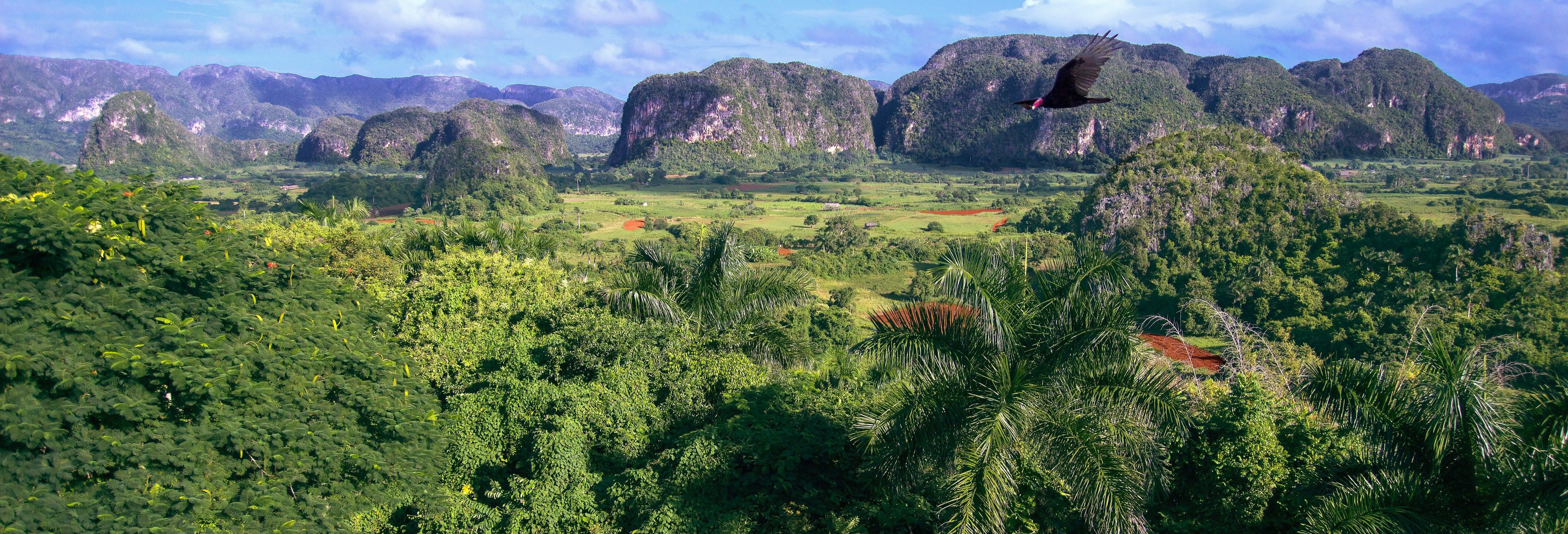 Viñales Horse Riding Tour