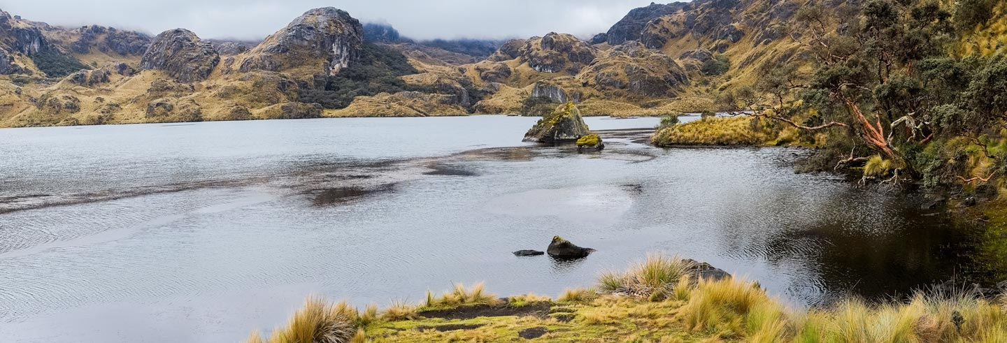 Excursion au Parc National El Cajas