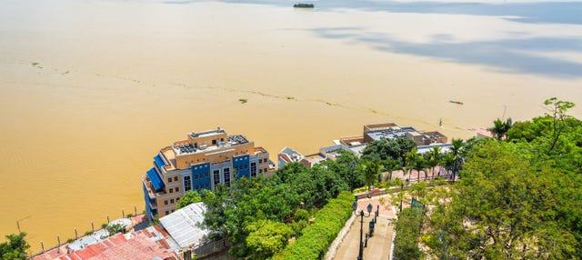 Paseo en barco por el río Guayas