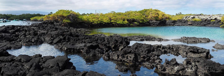 Île Isabela