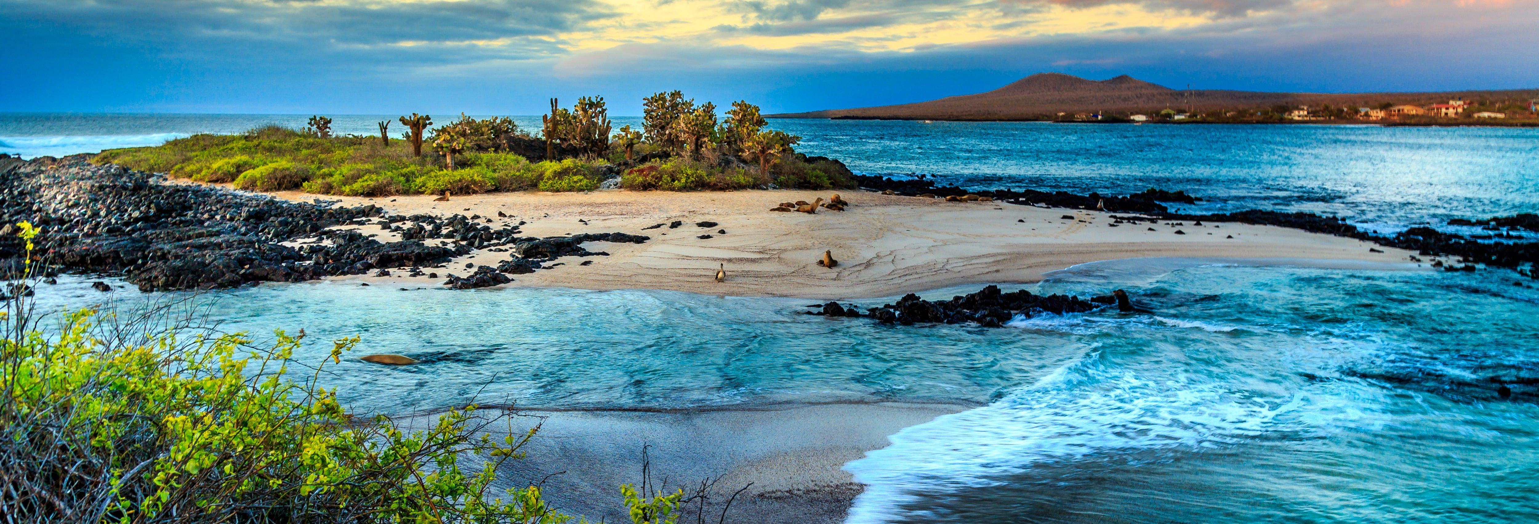 Crucero de 8 días por el norte de las islas Galápagos