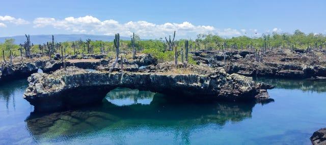 Excursión a Isla Isabela