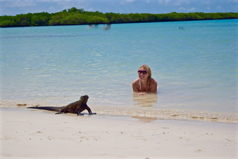 ,Excursión Bahía Tortuga