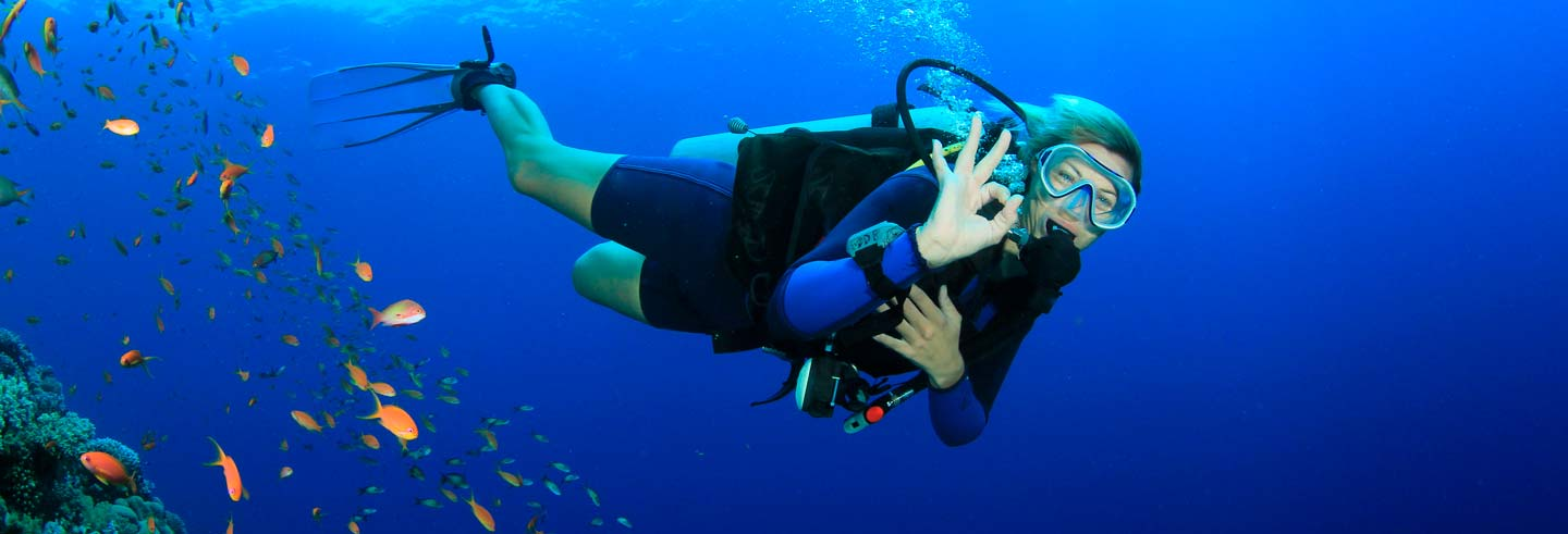 Scuba Diving for Beginners in the Red Sea
