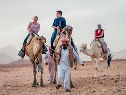 ,Excursión a desierto egipcio,Excursion to Egyptian Desert
