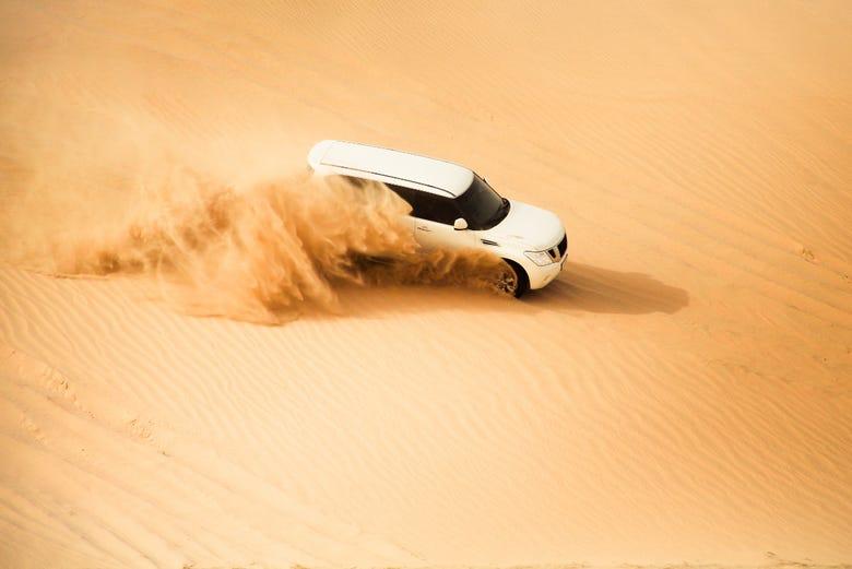 ,Excursión a desierto