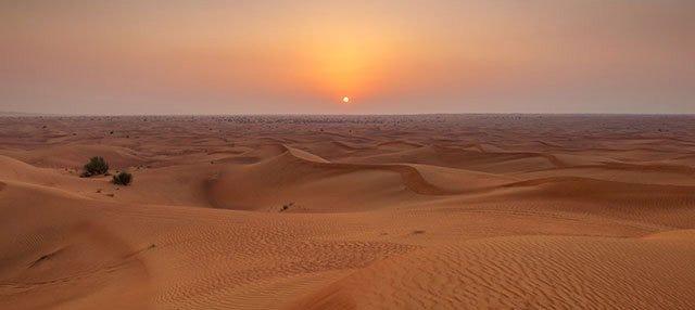 Cena en el desierto de Dubái