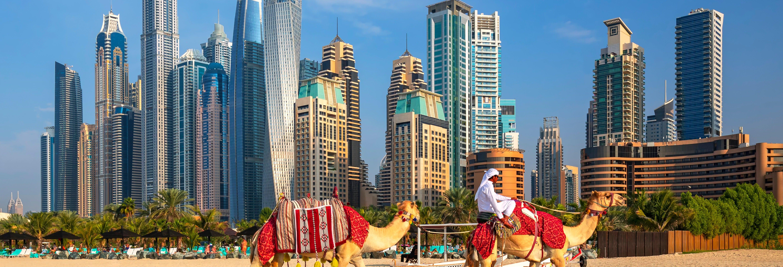 Oferta: Tour de Dubái + Desert Safari