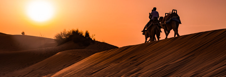 Giro in cammello nel deserto