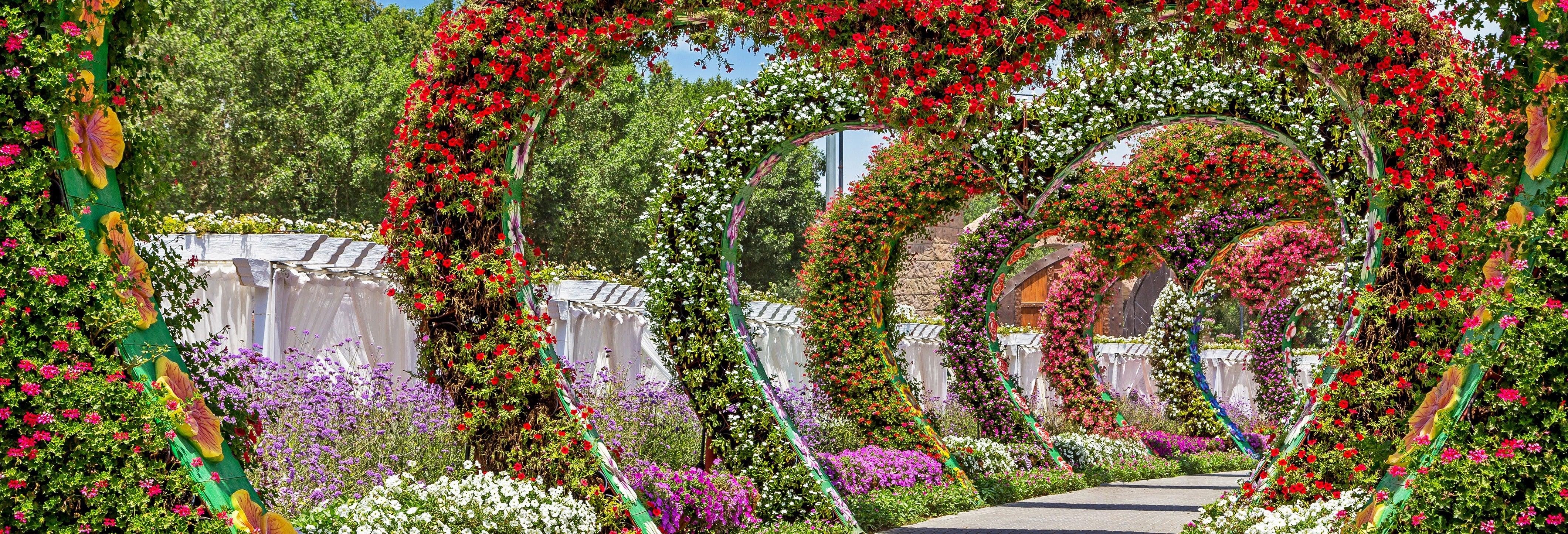 Tour: Giardino delle Farfalle e Dubai Miracle Garden