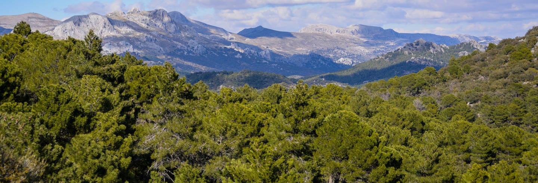 Senderismo por el Parque Natural Sierra de Huétor
