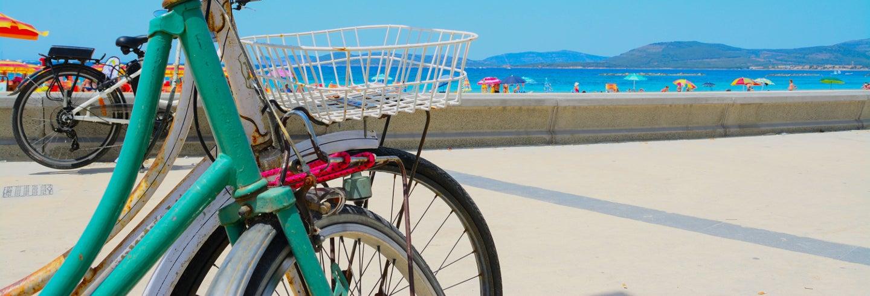 Tour en bicicleta por la playa y las Torres de la Huerta