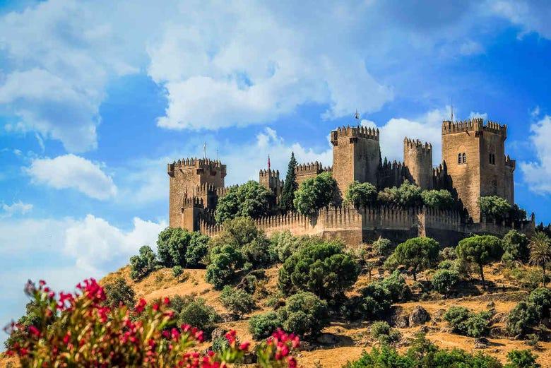 Billet pour le Château d'Almodóvar del Río