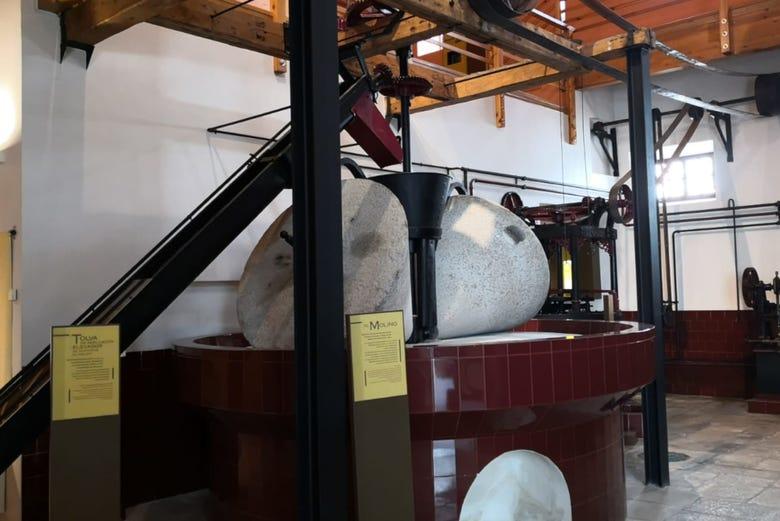 Visite du musée de l'Oliveraie + Dégustation d'huile d'olive
