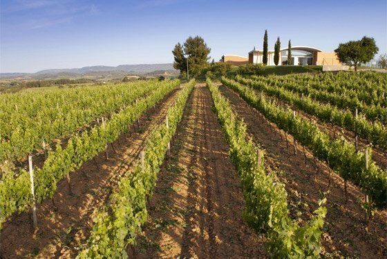 Route des vins et des cavas catalans