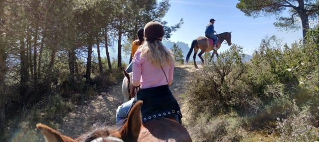Giro a cavallo a Montserrat