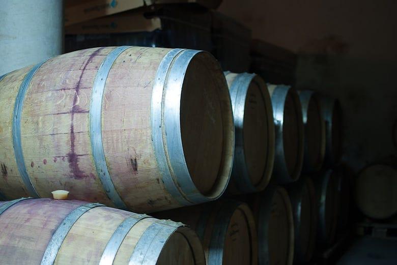 Visite du domaine viticole de Celler Cal Menescal