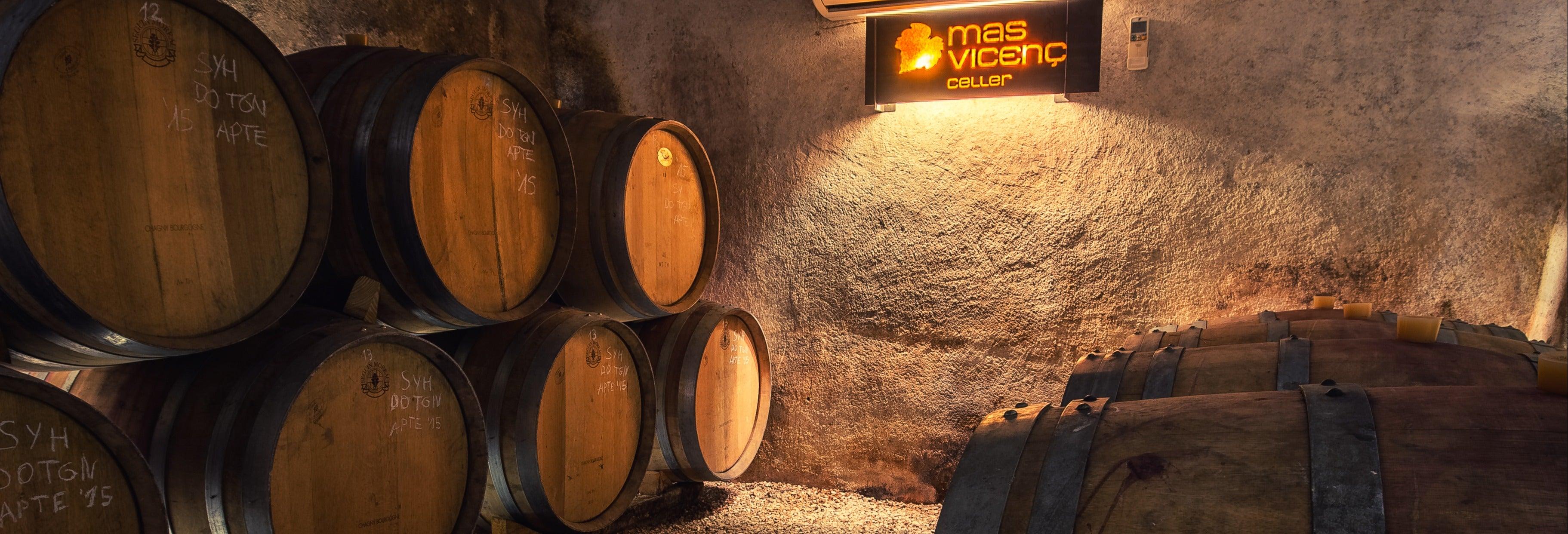 Visite du domaine viticole de Mas Vicenç