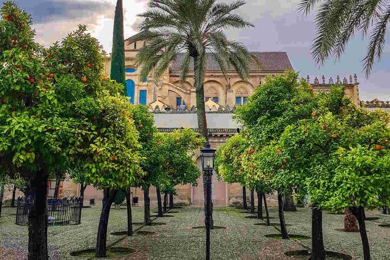 Visite guidée de la Mosquée et du quartier juif