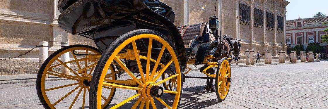 Coche de caballos de Córdoba