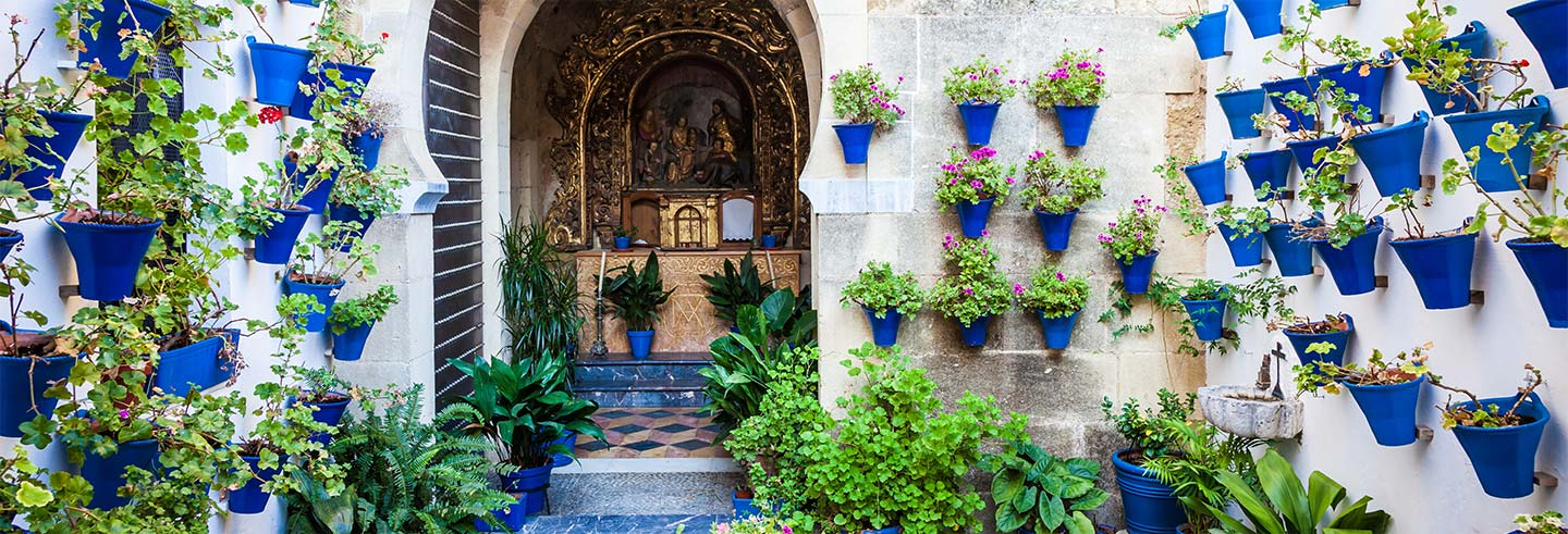 Cordoba Courtyards Guided Tour