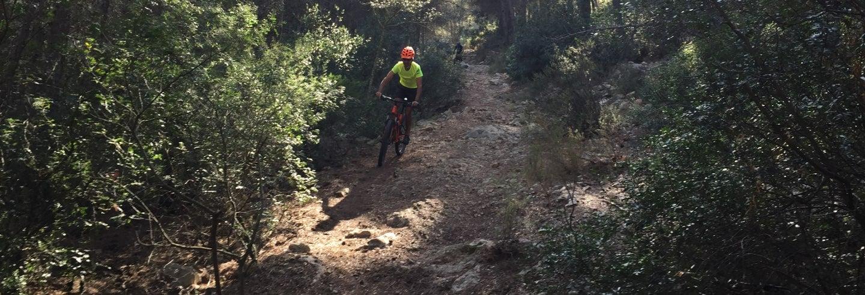 Tour en bicicleta por los alrededores de Denia