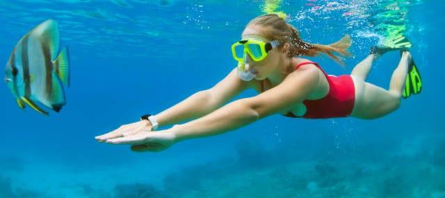 Snorkeling dans les îles Medes