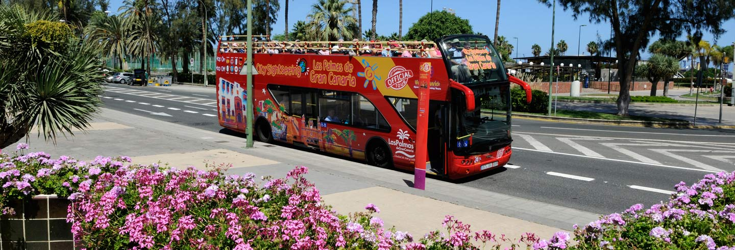 Las Palmas de Gran Canaria Hop-On Hop-Off Bus Tour