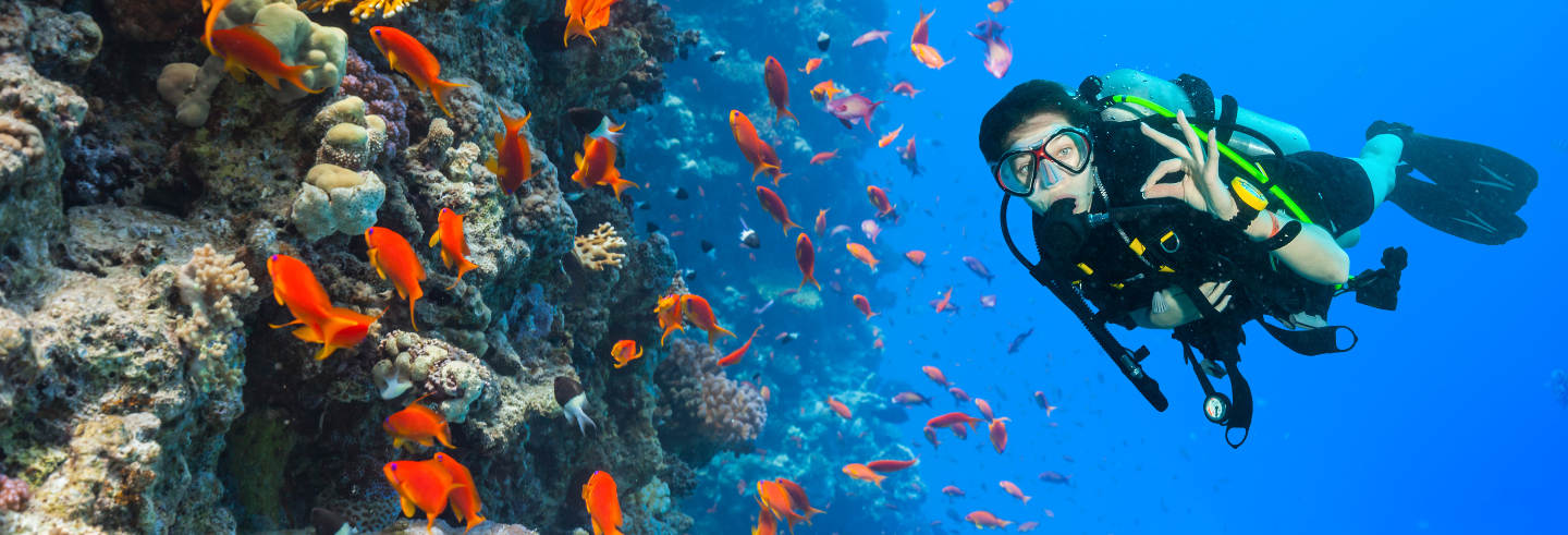 Scuba Diving for Beginners