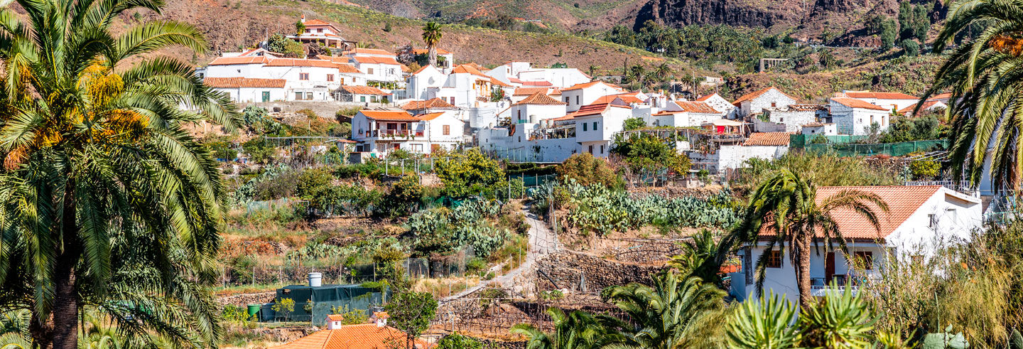 Full-Day Trip to the Peaks of Gran Canaria