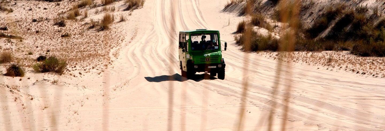 Visite guidée du Parc National de Doñana