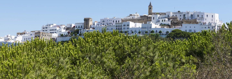 Escursione a Vejer de la Frontera e Medina Sidonia