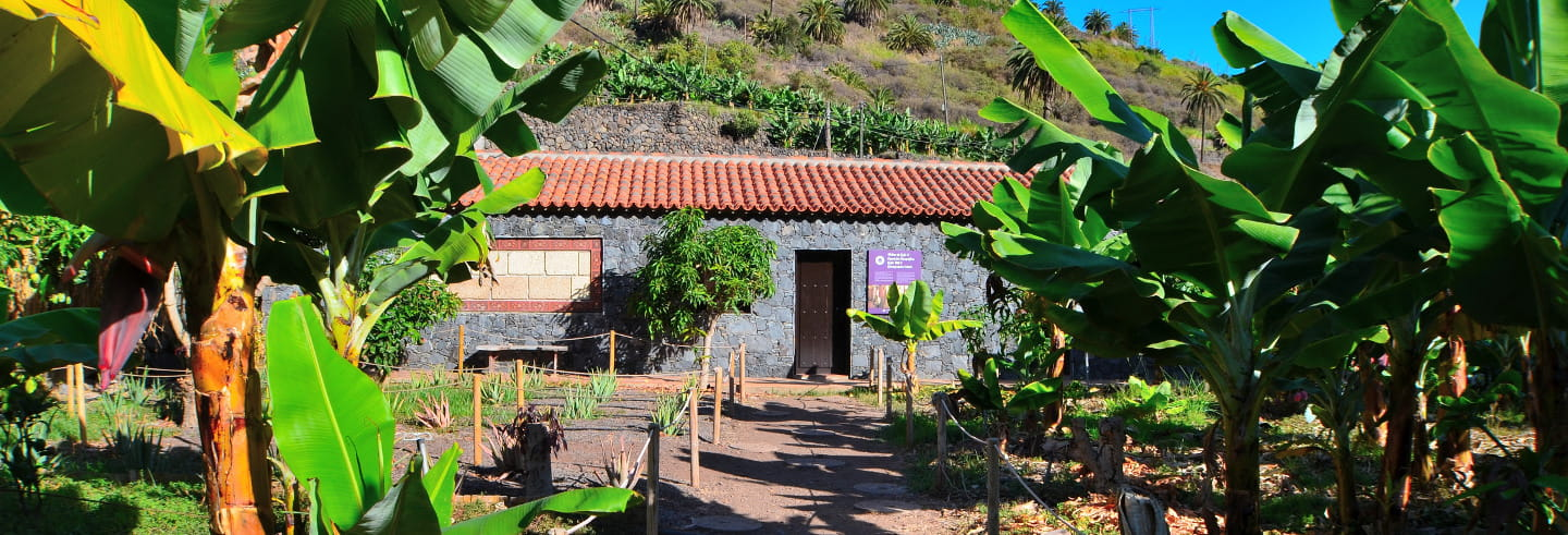 Ethnographic Park of La Gomera Tour