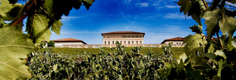 Visita guidata della cantina Rioja Vega