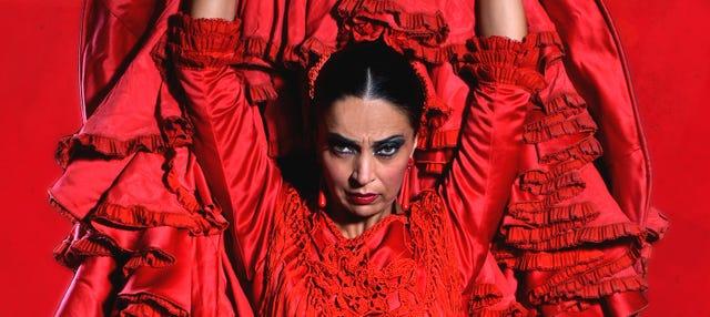 Flamenco Theatre Show