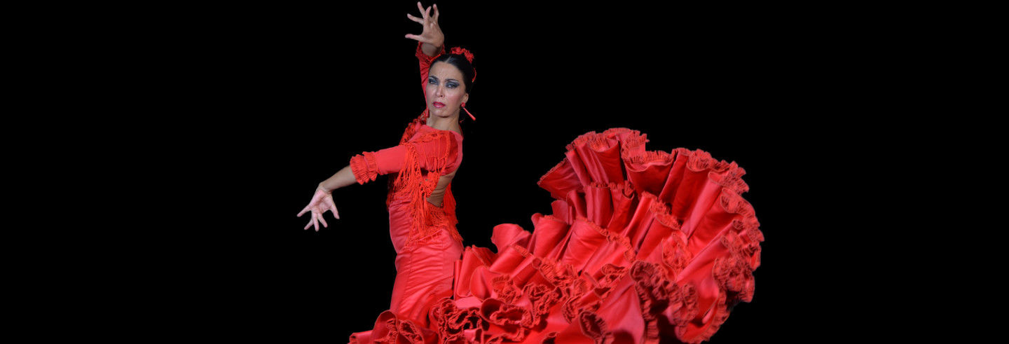 Flamenco Theatre Show