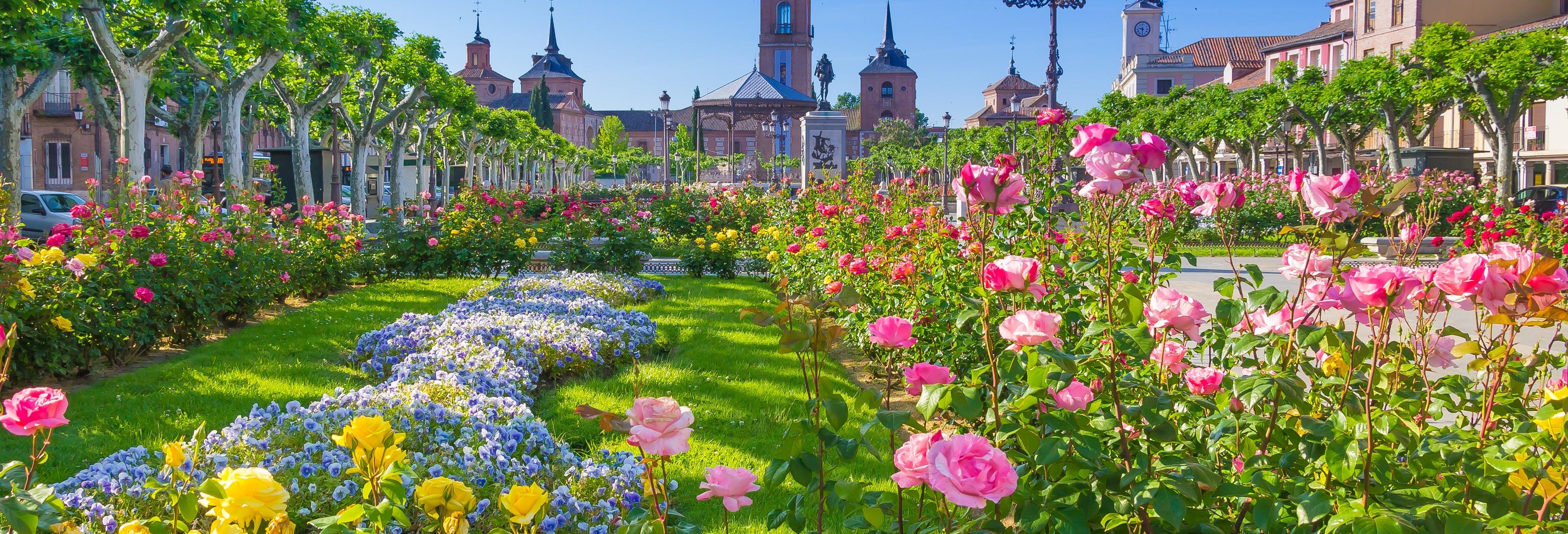 Excursão a Alcalá de Henares