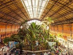 Fotos de madrid las mejores fotos de madrid for Jardin atocha