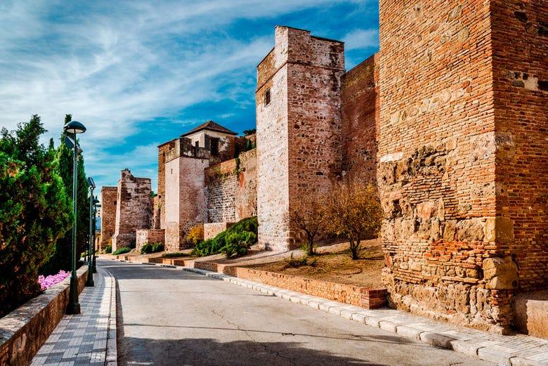 Visite guidée de l'Alcazaba et du théâtre romain