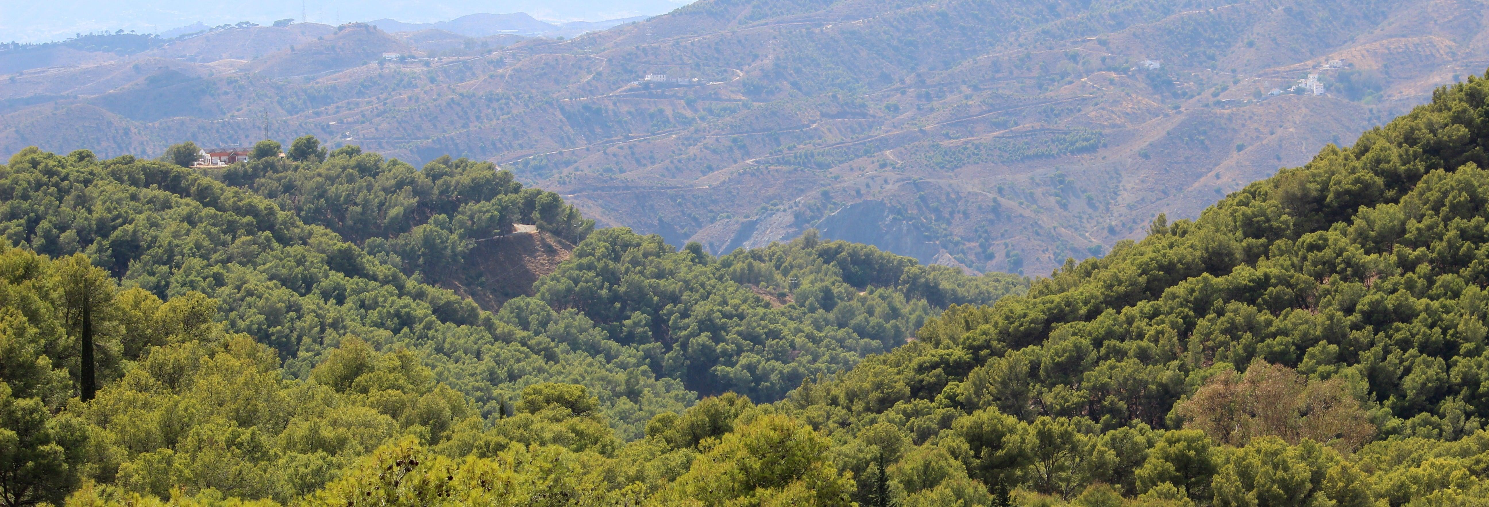 Senderismo por los Montes de Málaga