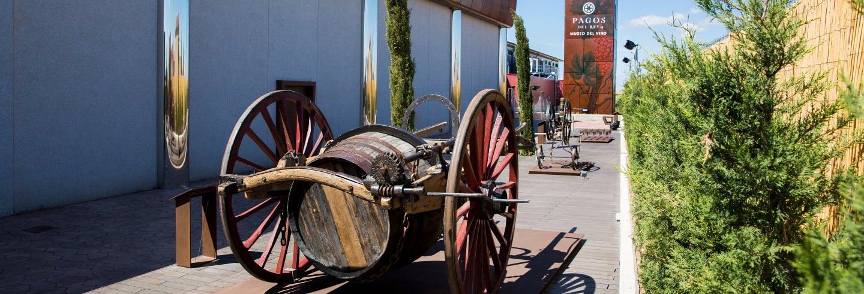 Visita guidata del Museo del Vino Pagos del Rey
