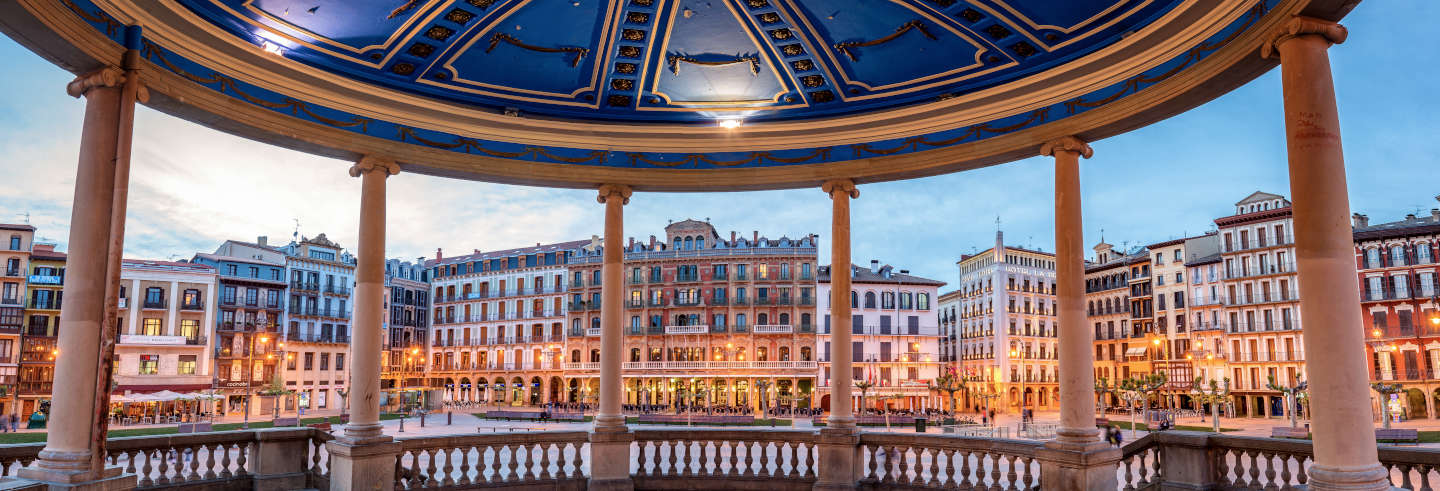 Pamplona Private Tour