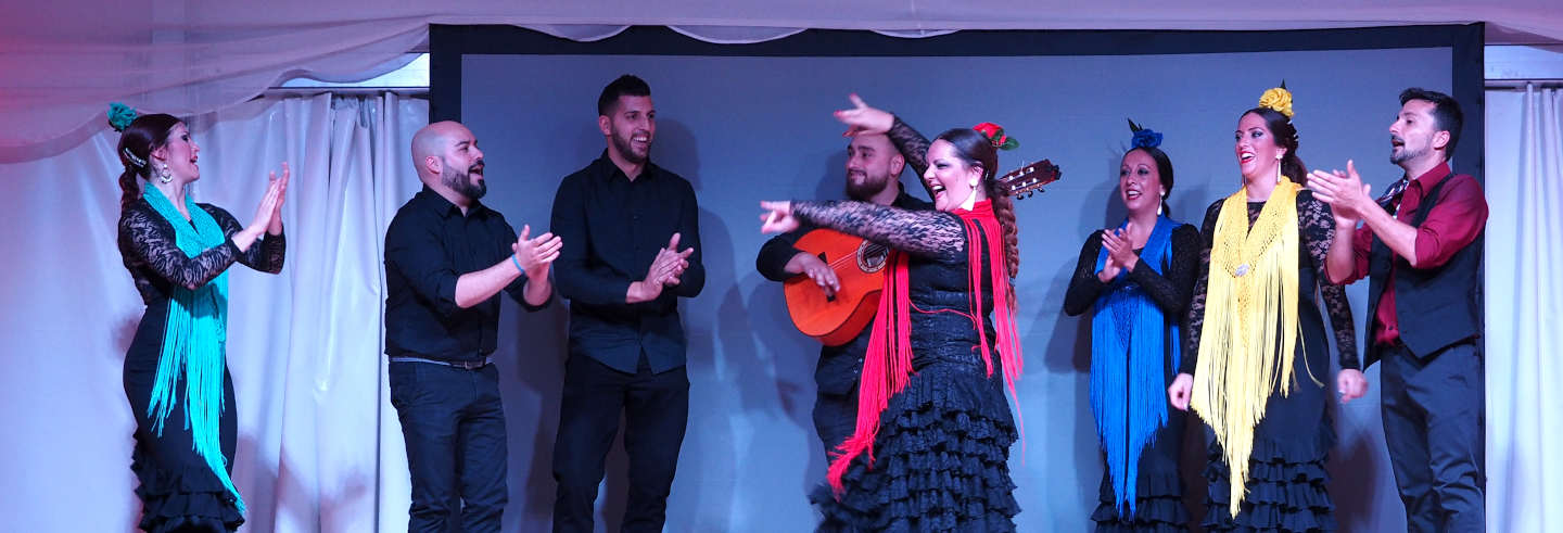 Flamenco and Equestrian Show in Cambrils