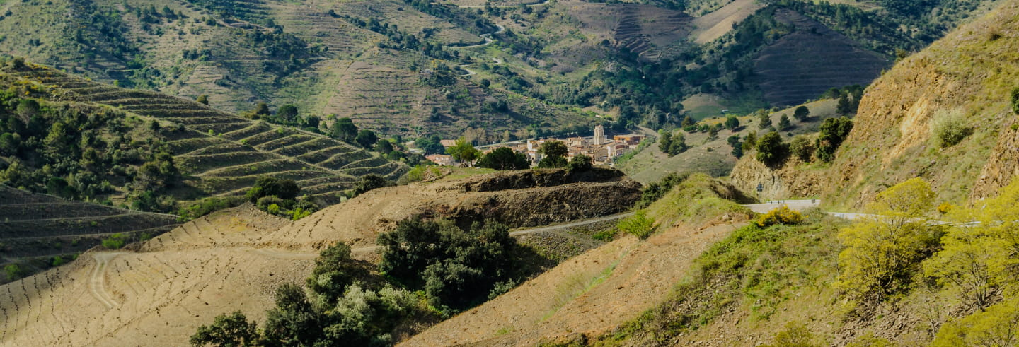 Tour del Priorat in 4x4