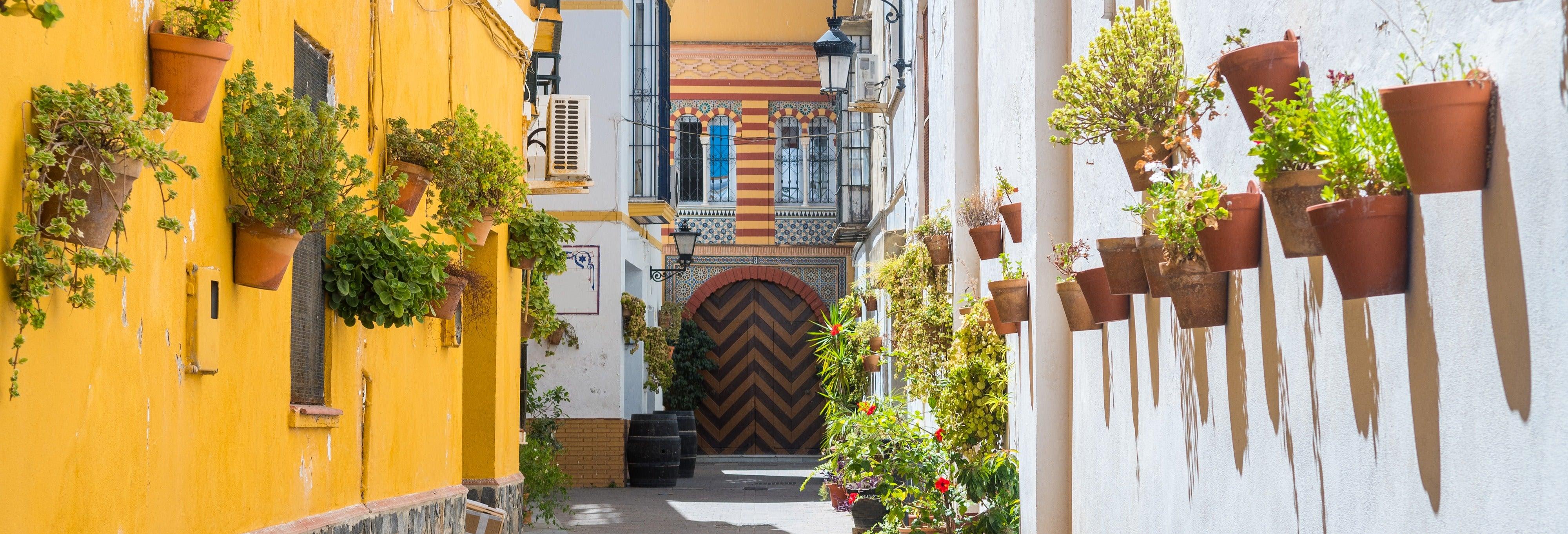 Excursão a Sanlúcar e Doñana