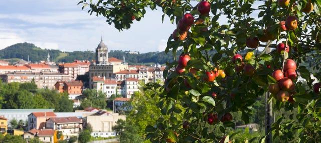 Tour de la sidra por San Sebastián