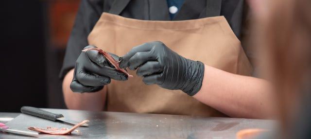 Fábrica de anchoas y paseo en barco por Santoña