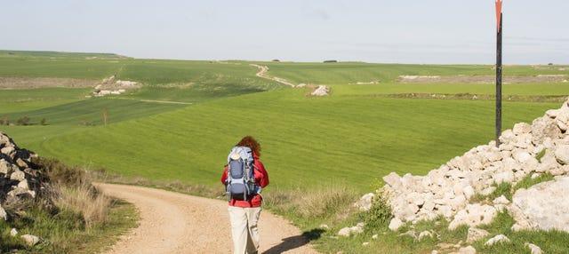 Tour del peregrino ¡Últimos kilómetros del Camino de Santiago!
