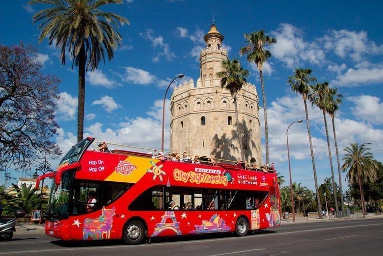 ,Autobús turístico