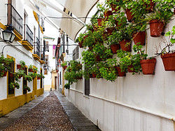 ,Excursión a Córdoba